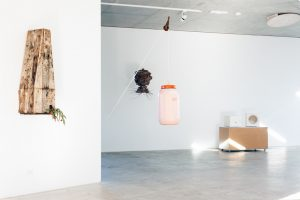 Swarm-Trap-Exhibition-Image-by-Charlie-White-2.jpg